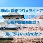 彦根城桜まつり2021 ライトアップの期間は?見ごろはいつ?
